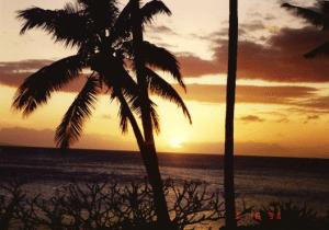 Beautiful Mauii