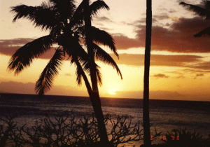 Mauii
